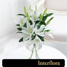 white lillies interflora white lilies from ocado