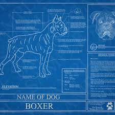 boxer dog wall art customized boxer dog blueprint boxer from wet nose u0026 wiggly