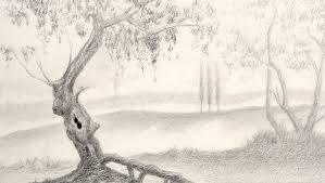 How To Draw Landscapes by How To Draw A Tree Landscape Youtube