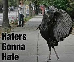 Turkey Memes - haters gonna hate turkey meme gurl com gurl com