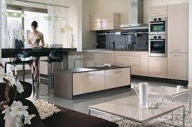 cuisine laquee entretenir une cuisine laquée conseils et astuces de ménage