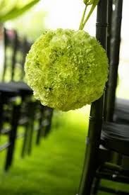 Wedding Flowers Knoxville Tn Kissing Ball Outdoor Decorations Wedding Florist Knoxville Tn