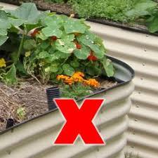 raised garden beds wa u2013 making gardening easier