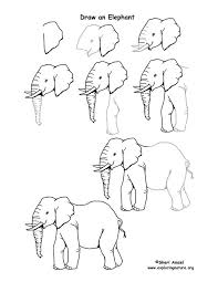 best 25 elephant drawings ideas on pinterest elephant drawing