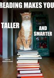 Mere Cat Meme - 18 reactions we ve had to people who don t read books book stuff