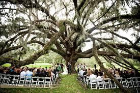 Wedding Venues In Orlando Orlando Science Center Nature Wedding Tiffany U0026 Kyle