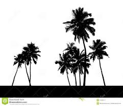 of palm trees silhouette stock illustration image 31205211