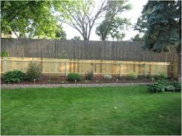 Privacy Fence Ideas For Backyard Backyard Cheap Fence Ideas For Backyard Inspiring Privacy Ideas