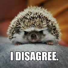 Hedgehog Meme - why must every pick have to have a description watson the hedgehog