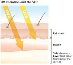 Do You Get Vitamin D From Tanning Bed Tanning Beds And Vitamin D