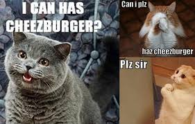 I Can Has Cheezburger Meme - cat meme driven marketing for the uninitiated