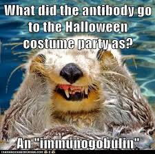 Halloween Party Meme - what did the antibody go to the halloween costume party as an