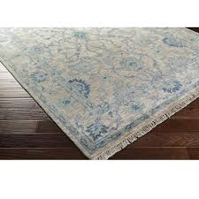 and blue bordered rug