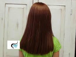 haircuts front and back views layered haircuts for long hair back view haircuts for long hair