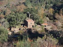 Haus Oder Grundst K Kaufen Sie Wollen Ein Grundstück Oder Eine Immobilie In Portugal Kaufen