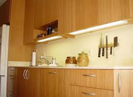 Bamboo Cabinets Kitchen Bamboo Kitchen Cabinets Custom Quality Kitchen Bath Cabinets