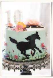 best 25 horse cake ideas on pinterest who shares my birthday