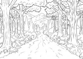 nature scene coloring pages jungle u0026 forest coloring pages for adults justcolor