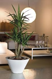 vasi decorativi 50 idee di portavasi da interno ceramica image gallery