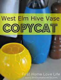 Challenge Vase Copy Cat Challenge West Elm Hive Vase Home