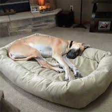 Dog Sofas For Large Dogs by Dog Beds For Large Dogs Mammoth Dog Beds Usa