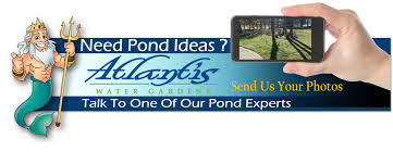 pond construction pond maintenance services morris county nj
