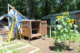 building secure chicken coops small house big sky homestead