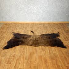 Bison Hide Rug American Buffalo Rug For Sale 17445 The Taxidermy Store