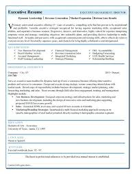 executive resume templates word executive resume sles luxsos me