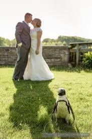 columbus zoo wedding wedding photographers columbus zoo wedding venues columbus zoo
