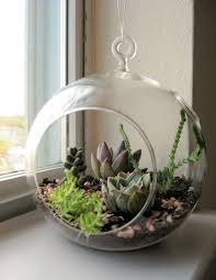 2pcs set hanging air plant bonsai 15cm glass globe terrariums