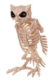 Halloween Skeleton Prop by Skeleton Owl Halloween Prop Costumes Com Au