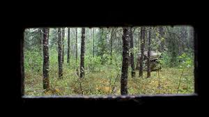 Bow Hunting From A Ground Blind Want To Hunt From A Ground Blind Here Are Our Top Tips