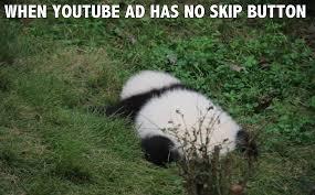 Panda Meme - these panda memes showing daily struggles of life are so damn