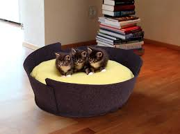 luxury cat beds for your cat editeestrela design