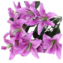 Purple Lillies Purple Lily Promotion Shop For Promotional Purple Lily On