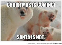Bear Stuff Meme - christmas is coming santa is not funny polar bear meme picture