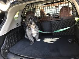 nissan singapore nissan created a special rogue suv just for dog owners u2014 here are
