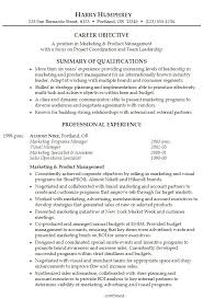 example of resume summary resume summary statement examples entry
