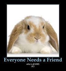 Cute Easter Meme - cute bunny puns happy easter e forwards com funny emails