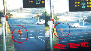 ran a red light camera cyclist running red lights crap courier mail
