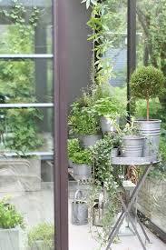 684 best container gardening images on pinterest gardening