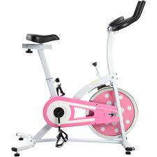 sunny health and fitness sf b1110s indoor cycling bike walmart com