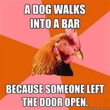 Chicken Meme Jokes - anti joke chicken r i p boiled water you will be mist image