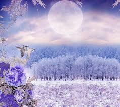adorable tag wallpapers splendor snow trees peaceful wonderful