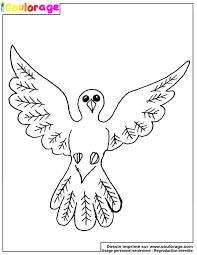 Coulorage  Dessin et coloriage de colombe à imprimer