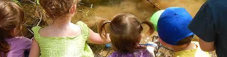 kids u0027 page the arboretum