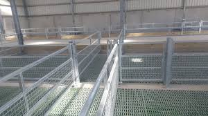 pics a sheep shed designed to u0027make life easier u0027 during the