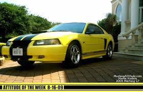 Yellow Mustang With Black Stripes 2003 Gt Options Package