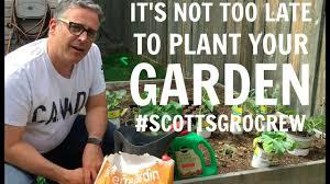how to start a backyard garden in summer scottsgrocrew youtube